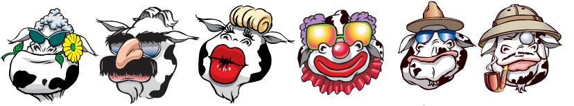 cows-of-toronto