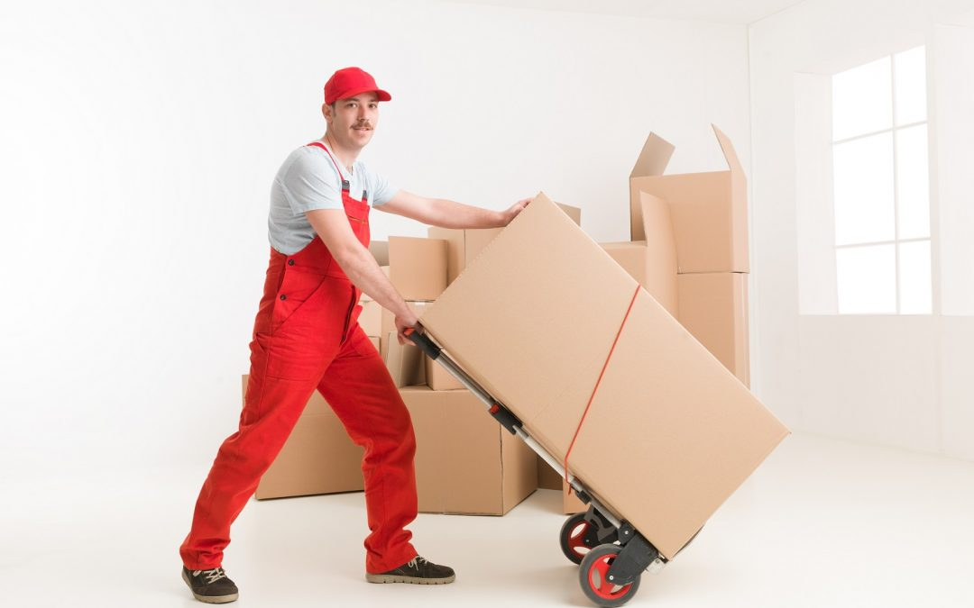 Looking For Moving Companies Near You?